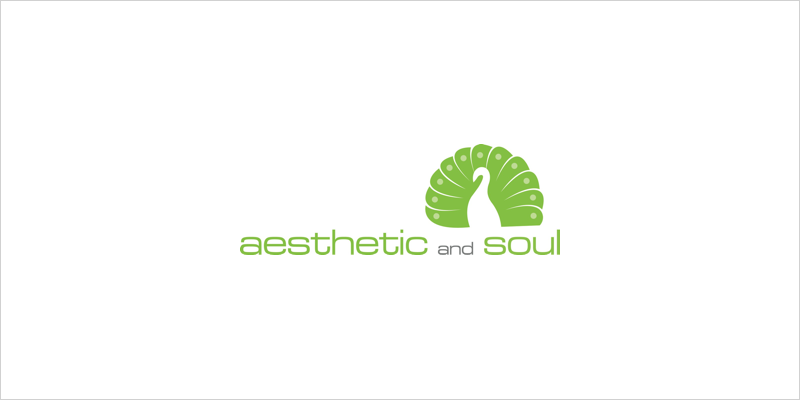 aesthetic_and_soul_logo